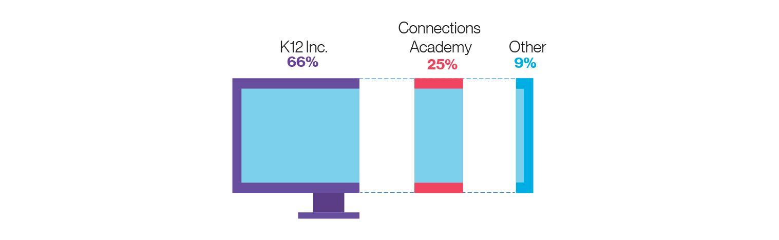 Graphic showing 2017 michigan cyber charter enrollment by EMO: 66% K12 Inc., 25% Connections Academy, 9% Other