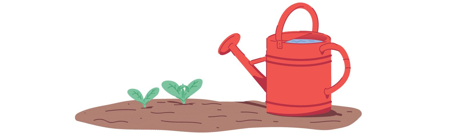 Image: watering can and sprouting plant